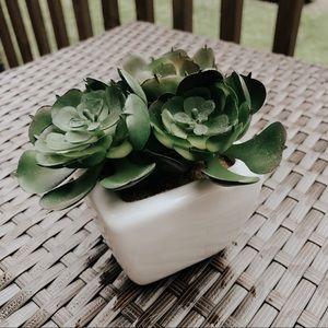 Faux White Potted Succulent Cactus Plant